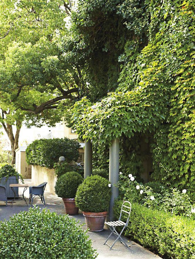".  Myra H. Home in Healdsburg, CA  ""Ivy House"""
