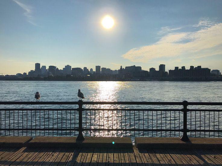 Montréal depuis le parc Jean Drapeau