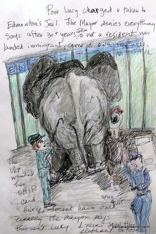 lucy edmonton valley zoo elephant - Google Search