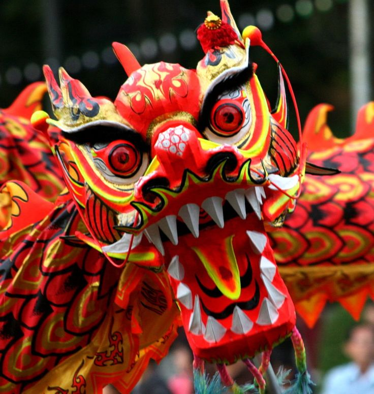 chinese new year | Chinese New Year Dragon |HD Wallpapers Fan | Full HD Wallpapers 1080p ...