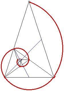 espiral aurea - Cerca amb Google