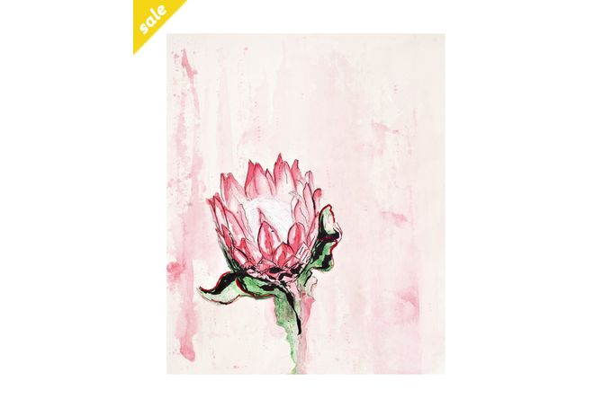 ​Botanical Illustration 02 – 'Protea Cynaroides' by Abundance Designs for sale on hellopretty.co.za