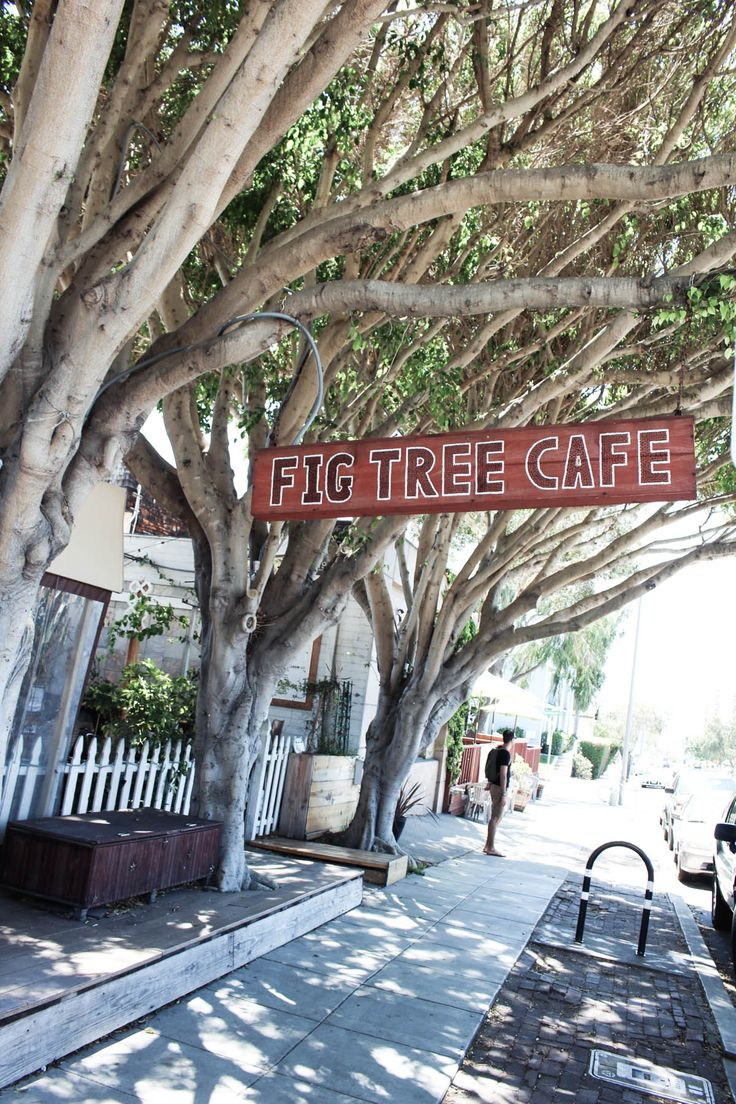 Exploring San Diego: Fig Tree Cafe