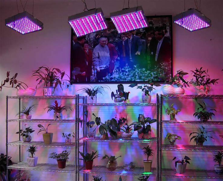 Indoor gardening best lighting system Indoor Gardening