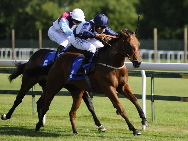 Sunday Irish Racing Tips: Condon can have more Success with Days  https://www.racingvalue.com/sunday-irish-racing-tips-condon-can-have-more-success-with-days/