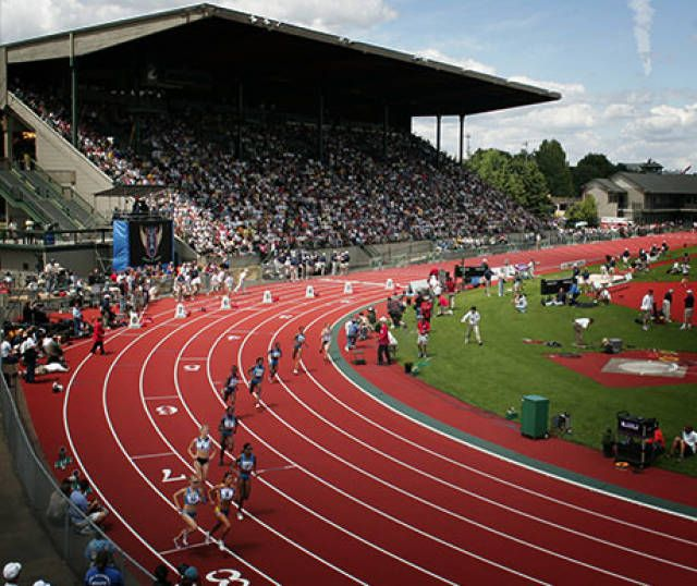 Oregon Ducks track and field 2013 - Hayward Field