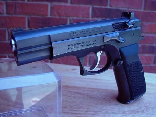 Tanfoglio T95 EAA Witness Elite Match Handgun - Prime Collection of Funny & Amazing Pictures