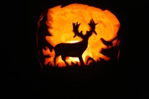 Best Pumpkin Carvings | The 30 Best Pumpkins from the F&S 2010 Pumpkin Carving Contest ...