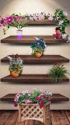 Flowers  polc