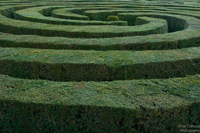 The Maze Where Everything Happens Labyrinth