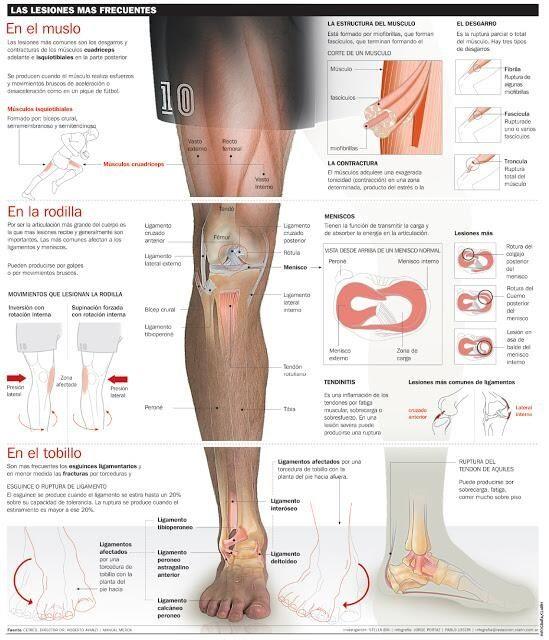Lesiones deportivas más frecuentes en rodilla y pie.