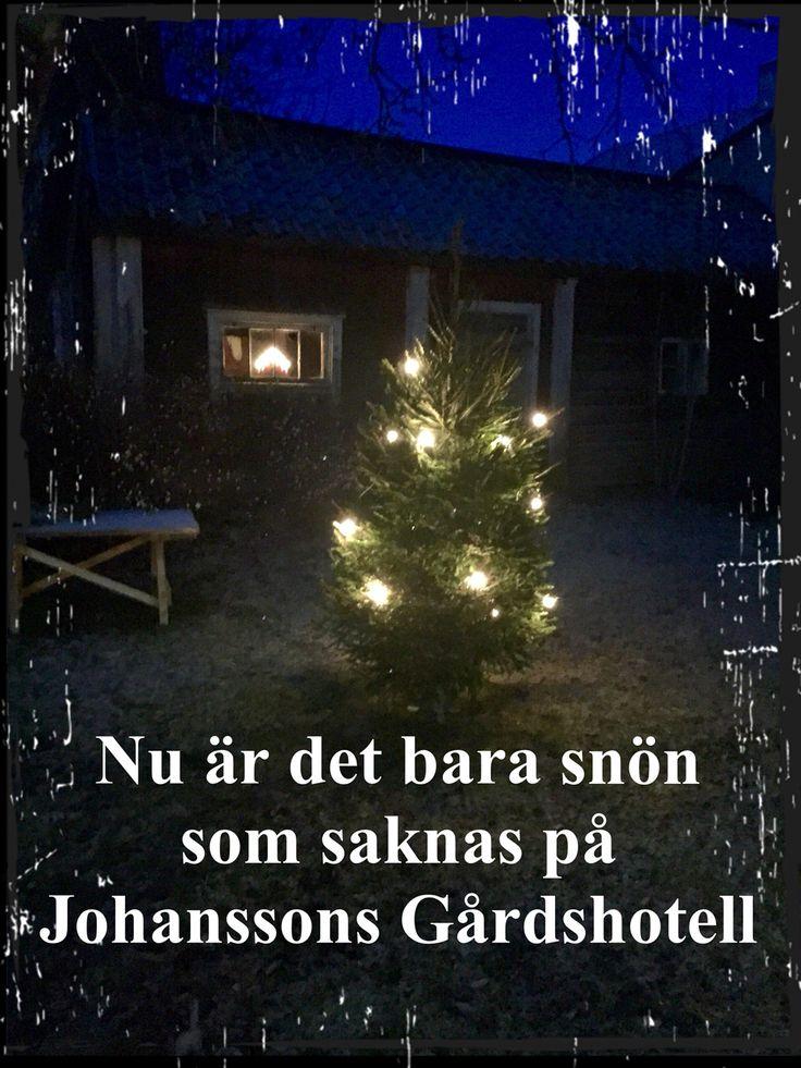 Jul på Johanssons Gårdshotell i Roslagen, Östhammar