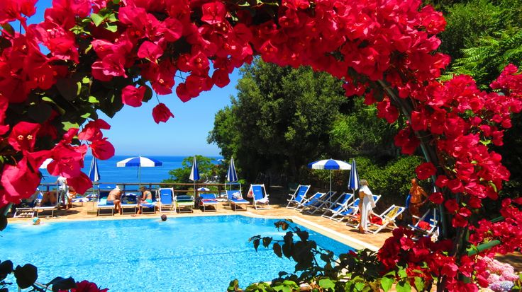 Good Morning Ischia! - Today's blog is about Castiglione Thermal Park and its flowers - www.ischiareview.com