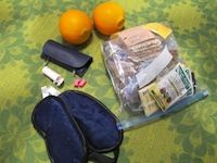 The Healthiest Travel Food To Pack Before You Go. Real, Organic and Non-GMO!