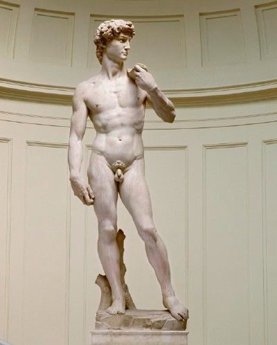 David. Michelangelo. 1501–1504. Marble.Height 5.17 meter. Galleria dell'Accademia. Florence.