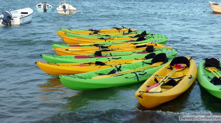 Bio-Bay in Fajardo by Kayak – A Sparkling Experience | Puerto Rico Day Trips Travel Guide