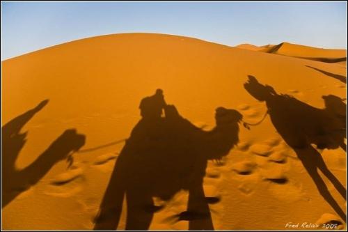 Sahara (Tunisia)