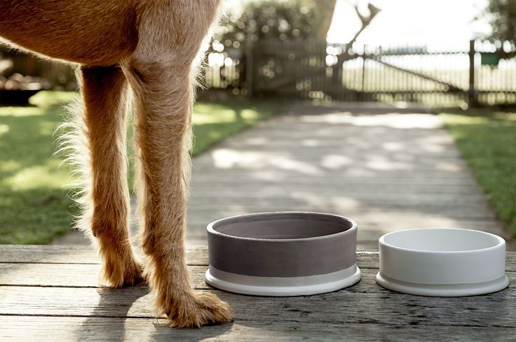 Who could forget the furry members of the family with this stylish two-tone, ceramic stoneware dog bowl.