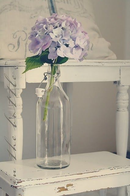 hortensia + bouteilles limonade