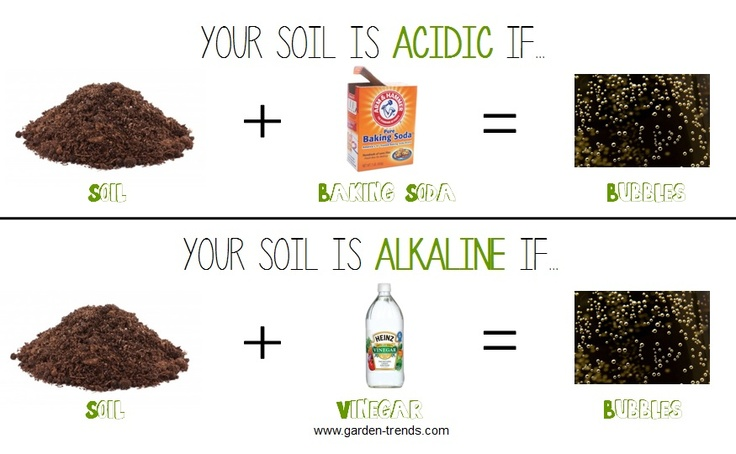 Garden trends soil scroll down to this illustration to for Soil zone definition