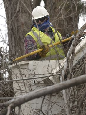 2007 ICE STORM ARCHIVE Rosendo Valdez, who works for Asplundh,  a tree service trim trees on Hovey St  Some workers put in 16 hours per day.