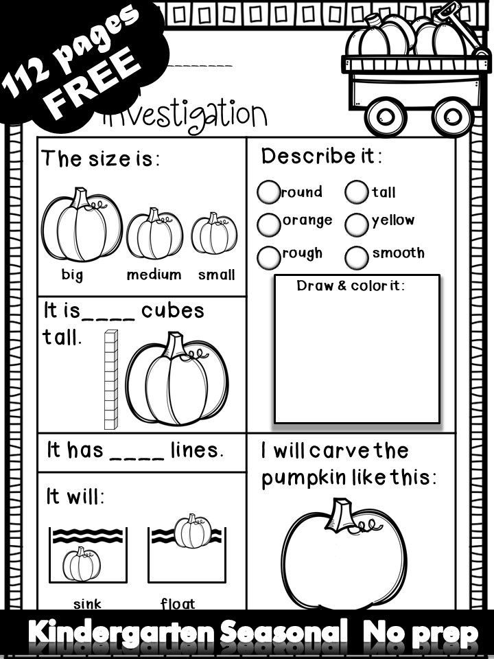 Fall Winter Spring Summer Free Math Literacy Printables Kindergarten Fall Kindergarten Fall Preschool Math Literacy