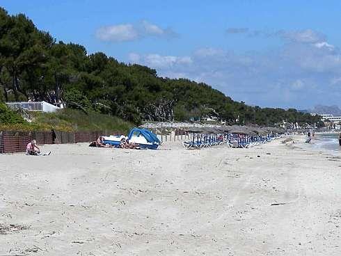 http://www.seemallorca.com/beaches/playa-de-muro-beach-mallorca-ca'n-picafort-660942