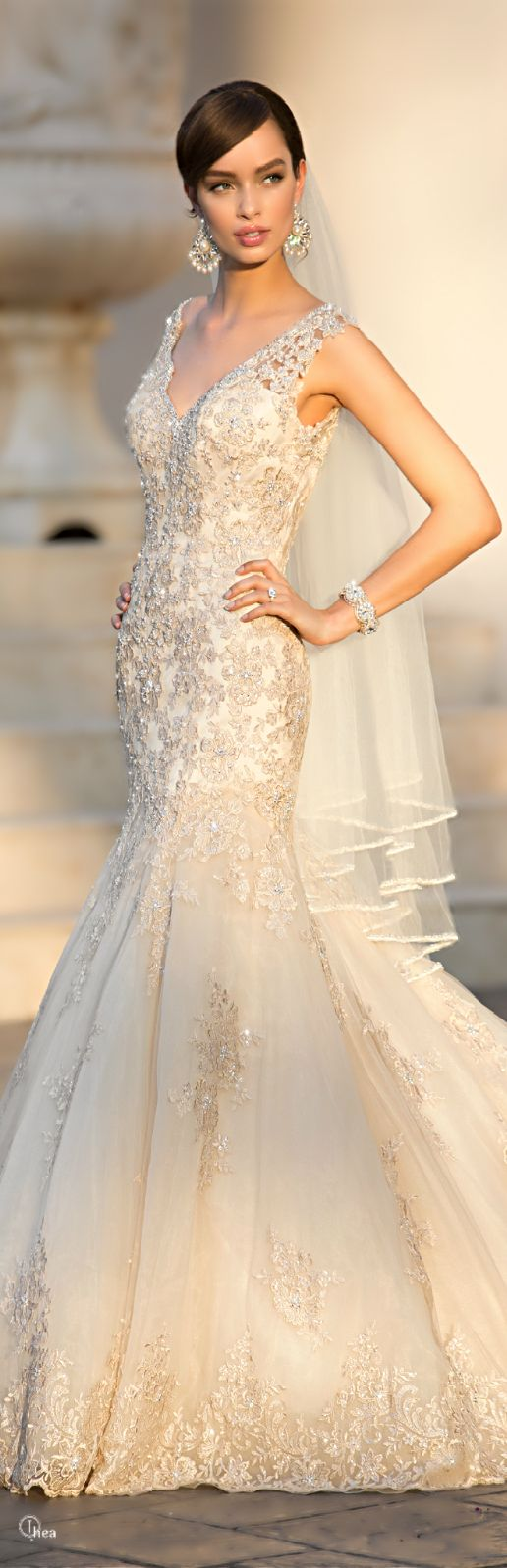 Todays Bride and Formal Wear- Lexington Park MD. Stella York gold lace wedding gown with embellished appliques and cathedral length veil
