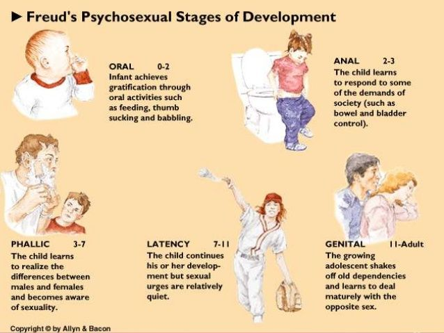 psychoanalytic and psychosocial theory Erikson's psychosocial developmental stages  through his studies and associations with the psychoanalytic  that erikson's theory qualifies as a.
