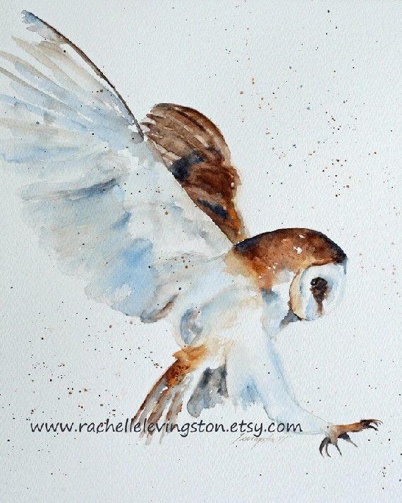 watercolor painting owl PRINT owl Painting by rachellelevingston