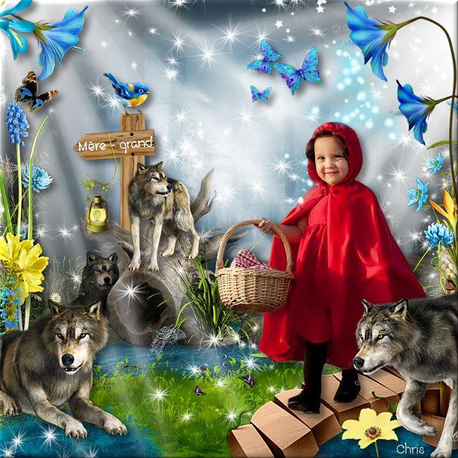 """""""Wild wolf"""" by Kastagnette"""