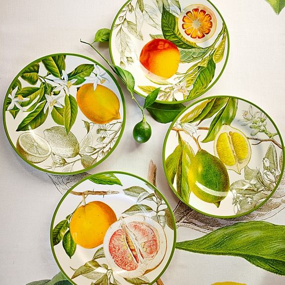 Botanical Citrus Salad Plates, Set of 4   Williams-Sonoma
