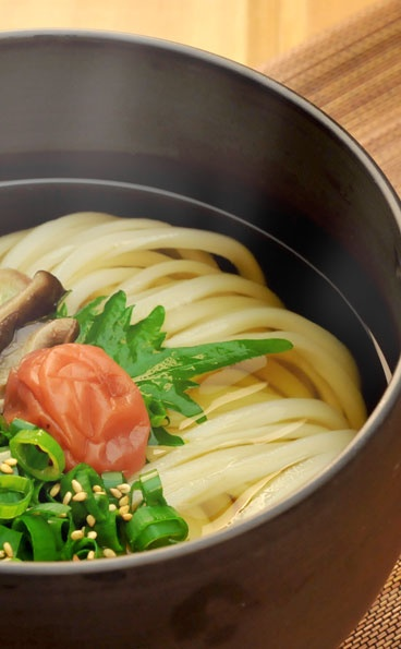 Japanese Udon Noodles with Umeboshi Sour-pickled Plum and Shiso Perilla|梅じそかけうどん       Love the Plum!