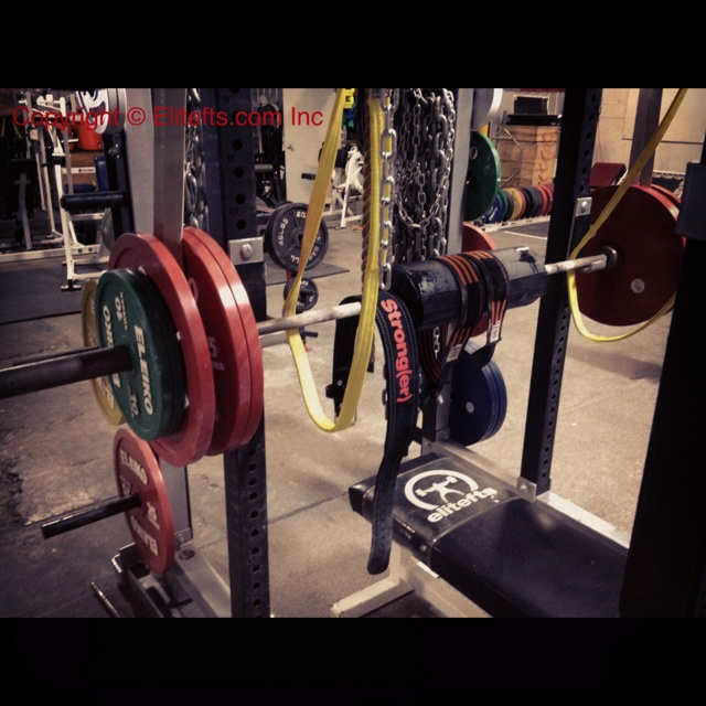 Elitefts™ gym pic of the day reverse band press with