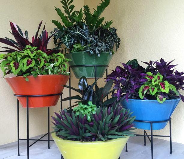 1000 Ideas About Florida Lanai On Pinterest Lanai Ideas