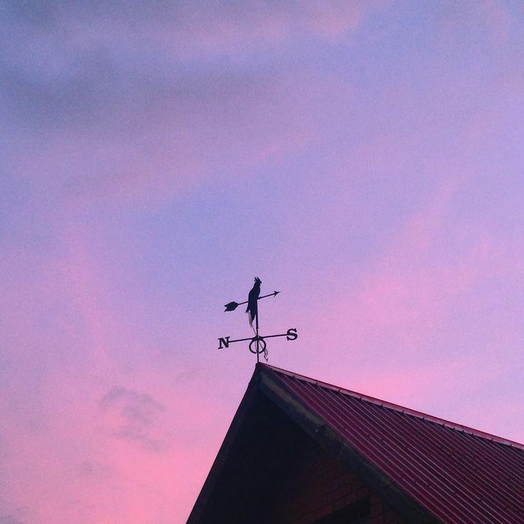Pink clouds & purple sky 🌸
