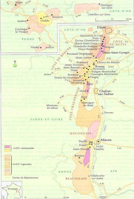 Piccolo Mondo : Le zone vitivinicole della Borgogna - I grandi vin...