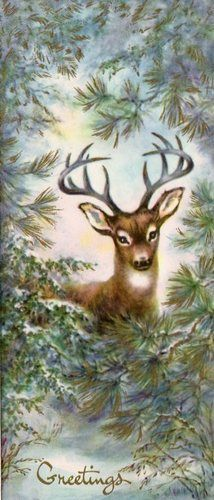 Vintage Deer Christmas Card: