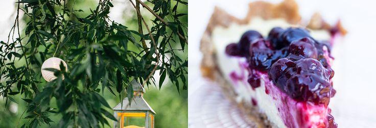 Una cheesecake di miglio e mandorle per chi desidera soddisfare il palato senza rinunciare al mangiar sano.