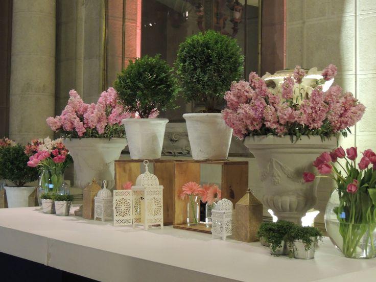 Flores Buffet, aleli, boj, tulipanes, astromelias, gerberas