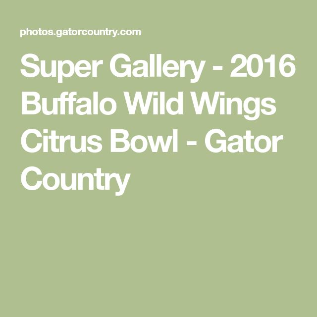 Super Gallery - 2016 Buffalo Wild Wings Citrus Bowl - Gator Country