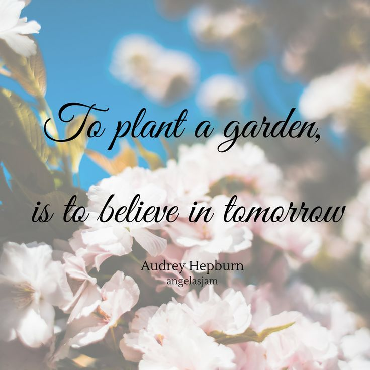 """10 Inspirational Quotes 