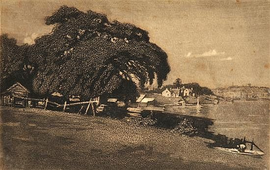 The Great Fig Tree, Berry's Bay, Sydney 1923 by Lionel Lindsay. Aquatint 23/75