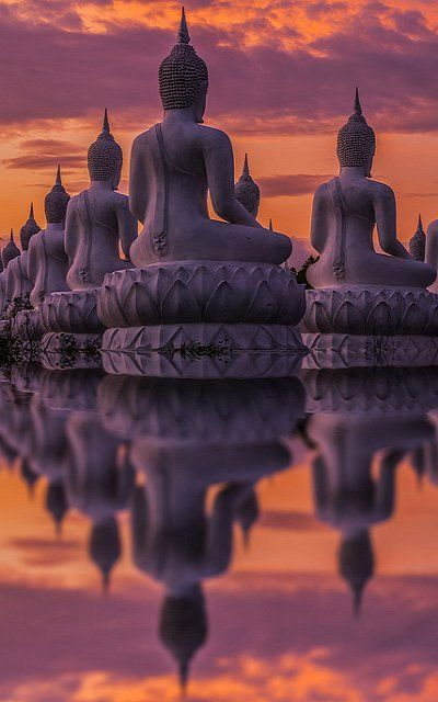 Many Buddha statue on sunset, India (by Anek Suwannaphoom) travel  dream  pink orange monument                                                                                                                                                                                 Más