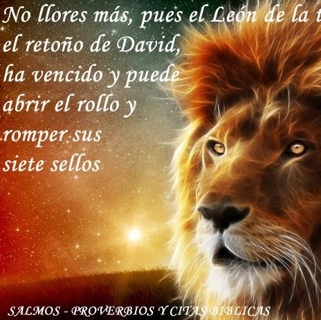 Mensajes cristianos on Pinterest | Dios, Biblia and Frases