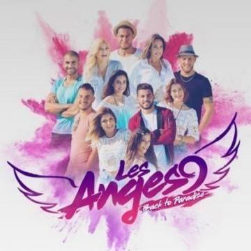 Les Anges 9, les Marseillais… Mais, que cache la téléréalité ? Un cauchemar télévisuel ? Ou bien une forte volonté d'inculture massive ?