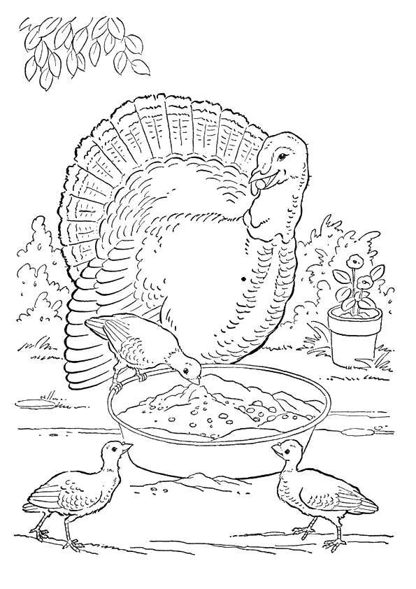 Best 25+ Farm coloring pages ideas on Pinterest