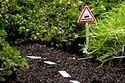 20 Miniature PotholeGarden