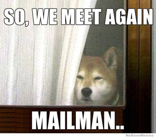Photo of Animal Humor for fans of Animal Humor. XD MORE funny pics of animals lol