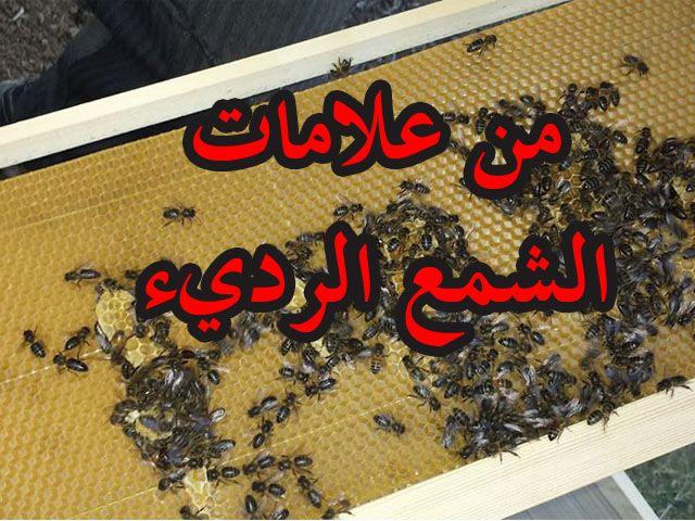 من أبرز العلامات التي تدل على أن شمع الأساس سيء أو قديم هي أنك تجد النحل يمط الشمع فوقه بطريقة فوضوية فمثلا تجده يبني القليل ف Company Logo Tech Company Logos